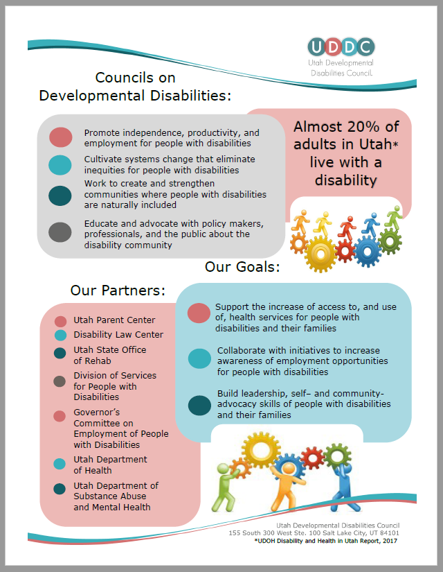 DD Council Flyer
